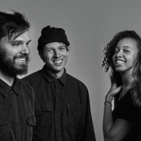 Dirty Projectors: That's a Lifestyle